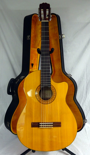 Good Acoustic Electric Guitars : takamine g series eg124c acoustic electric classical guitar w case great ebay ~ Russianpoet.info Haus und Dekorationen